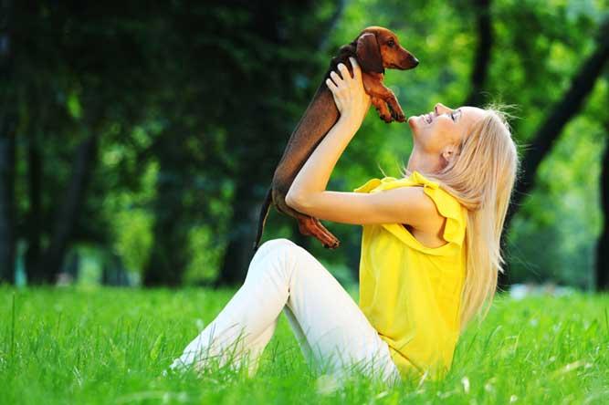犬を抱いている写真