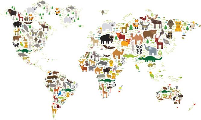 動物のイラストが描かれた世界地図