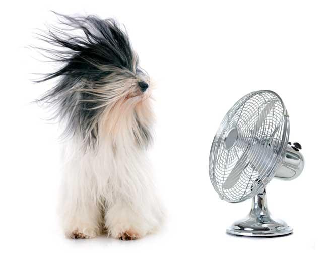 お出かけ前に、エアコンの設定の確認を