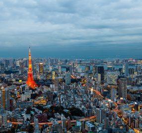 身近な生物多様性~その1.東京 ~