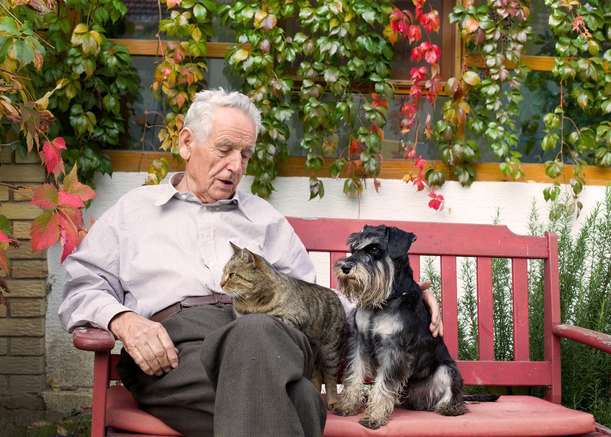 高齢者も安心!生きがいになるペット飼育!