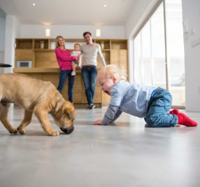 赤ちゃんができたら、ペットを飼ったらダメ?