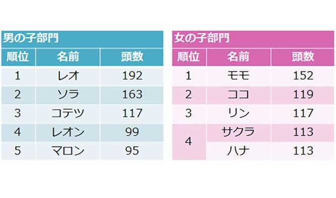 日本の男の子(オス)の名前ランキングと女の子(メス)の名前ランキング