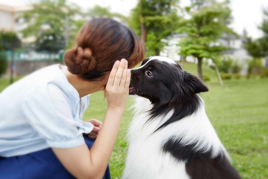 <!-- 【動画あり!】 -->「わたし、犬と話せます♡」は、単なるぶりっ子で済まされるのか。