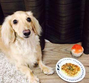 月2回は「ごほう日」に!? 8月におススメの「愛犬用手作りごはん」レシピ!