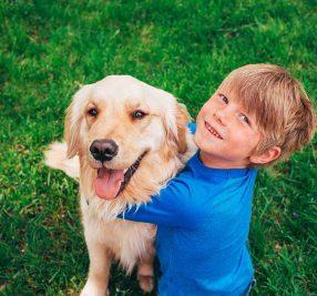 犬と仲良くなる方法