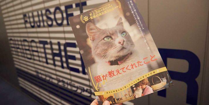 『猫が教えてくれたこと』 試写会へ行ってきました!