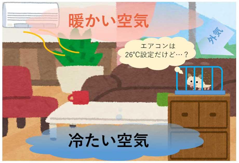 室内の温度のイメージ画像
