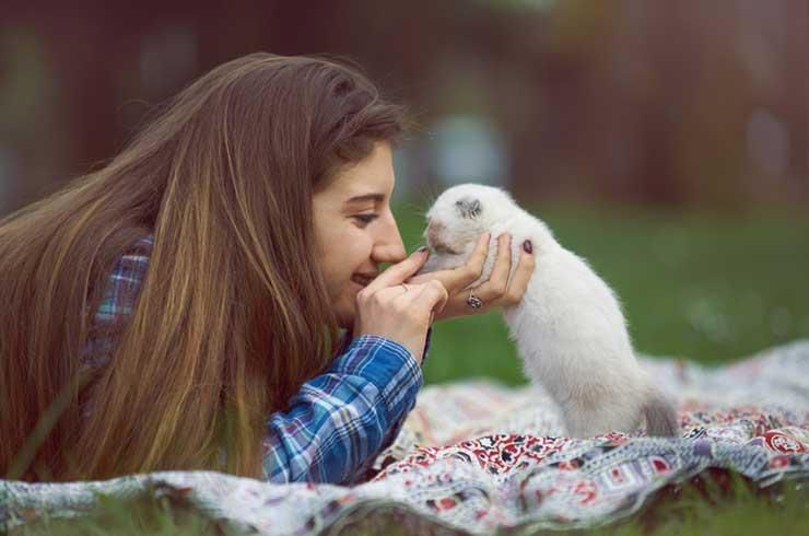 子猫を愛でる女性の写真