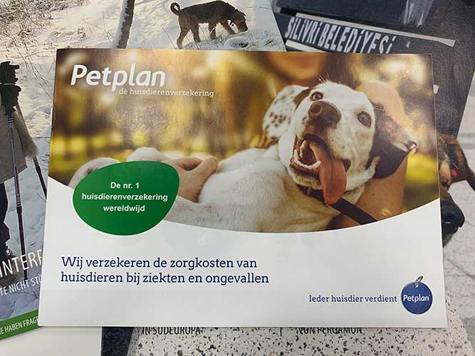 ペット保険のパンフレット