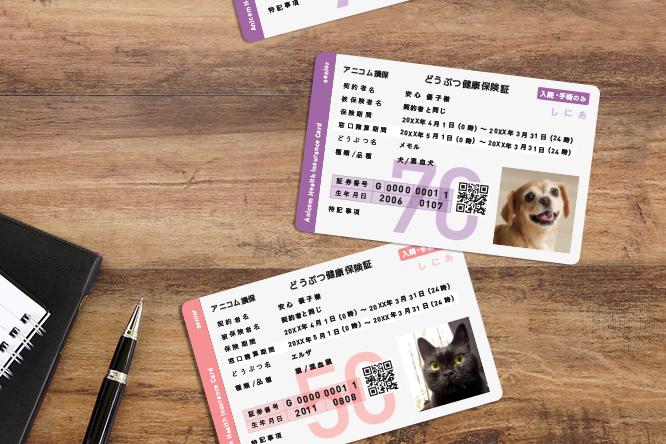 ペット保険アニコムの保険証のイメ―ジ写真