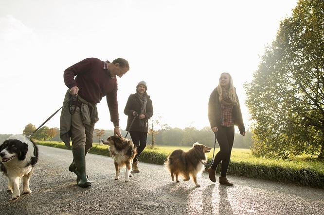 犬を散歩する家族