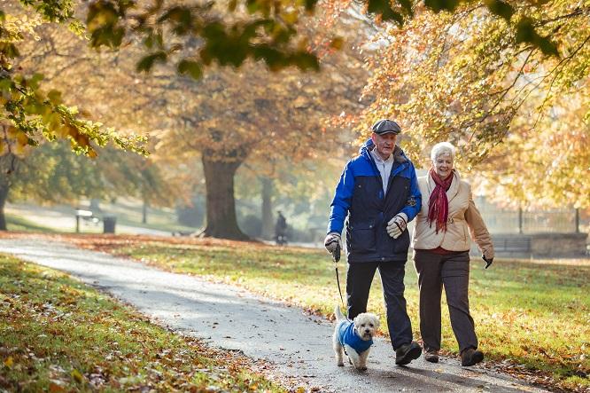 老夫婦と犬の散歩風景