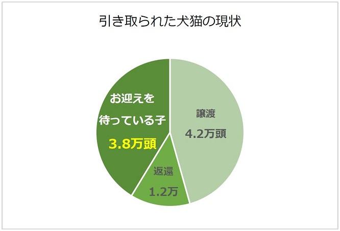 ポストカード裏面の円グラフ