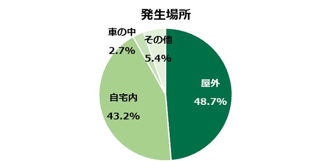 発生場所を示す円グラフ